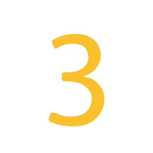 Module 3 : Intégrer contenu site WordPress
